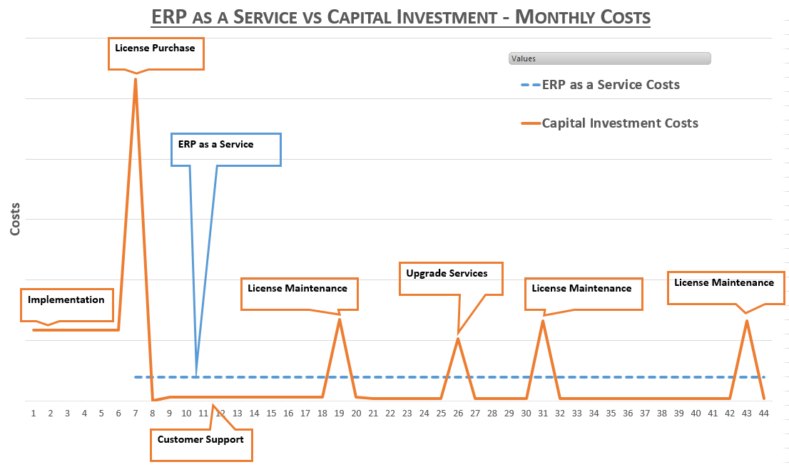 erp as service vs capital invest